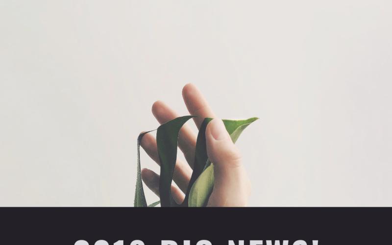 2019 投資賺錢方向與展望